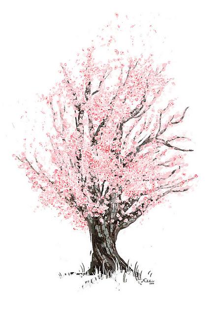 Drawn sakura blossom spring tree Tree bright tree soft