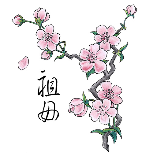 Drawn sakura blossom traditional Design Traditional TattooMagz Tattoo Chinese