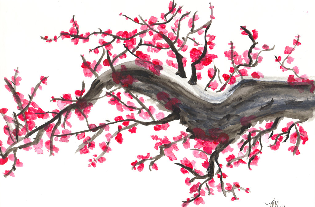 Drawn sakura blossom traditional Traditional Beliefs d45w2od East japanese_cherry_blossom__by_ging3r295