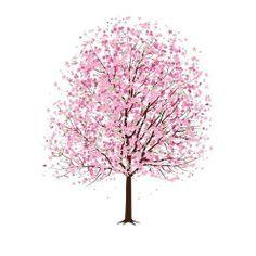 Drawn sakura blossom transparent SIMPLE Cherry LOVE Blossom tree