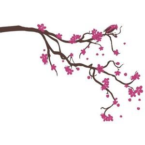 Drawn sakura blossom transparent Collective Blossoms Surface XL Wall