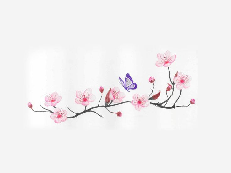 Drawn sakura blossom tribal I want really Cherry cherry_blossom_and_spring_time_with_flying_butterfly_tattoo_idea
