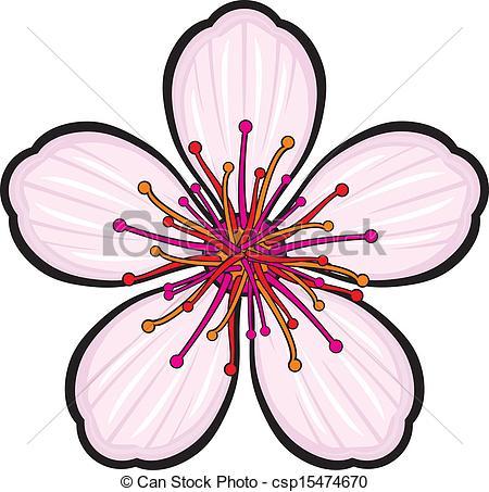 Drawn sakura blossom vector Illustration flower csp15474670 of csp15474670