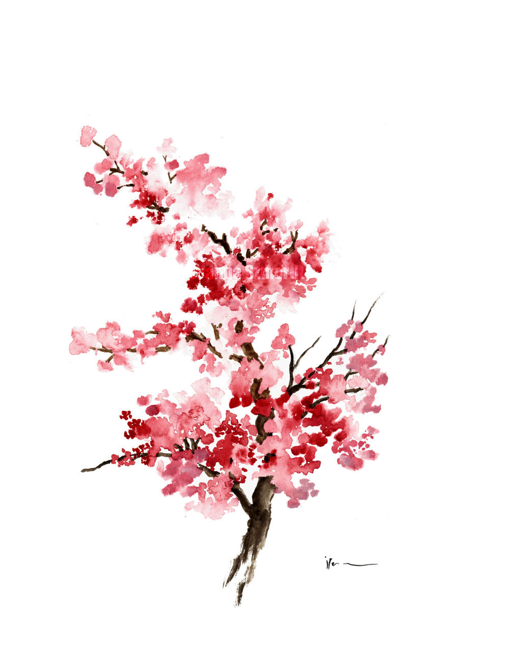 Drawn sakura blossom watercolor Best Illustration Gifts 3 Painting
