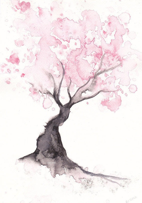 Drawn sakura blossom watercolor I more Blossom this Cherry