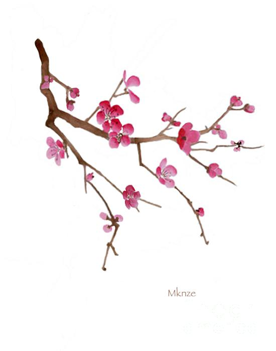 Drawn sakura blossom white background Japanese Blossom Blossoms Black Cherry
