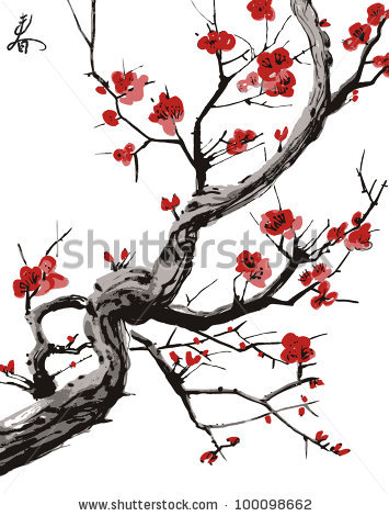 Drawn sakura blossom white background Japanese tree white sakura on