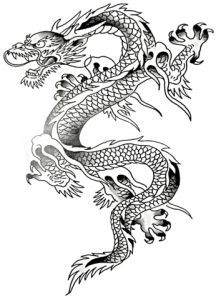 Drawn samurai chinese  Grey Ink Dragon school