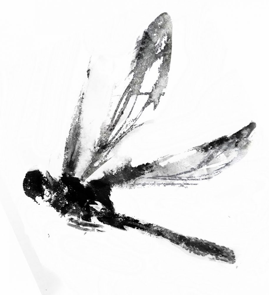 Drawn samurai dragonfly Dragonfly Dragonfly gabygabo Uploaded by