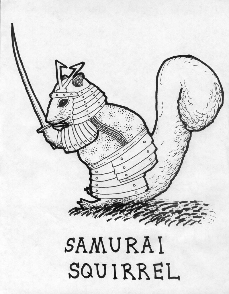 Drawn samurai squirrel Gallery Samurai Callahan The Squirrel