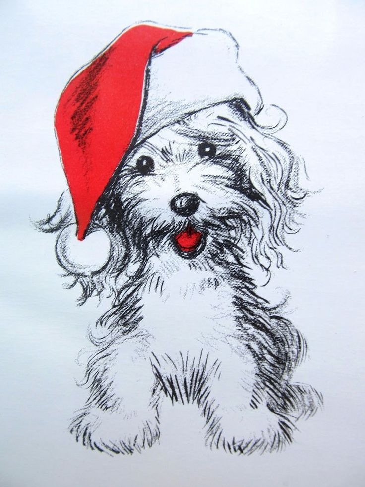 Drawn santa hat tiny Tongue 1960s Puppy Red Santa