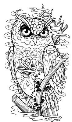 Drawn sanya coloring book  flower patterns in owl