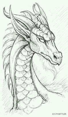 Drawn sanya line drawing Dragon Pinterest Doodles drawing ideas