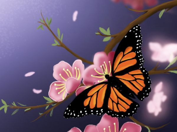 Drawn scenery outstanding Butterfly to Scenery Beautiful Spring