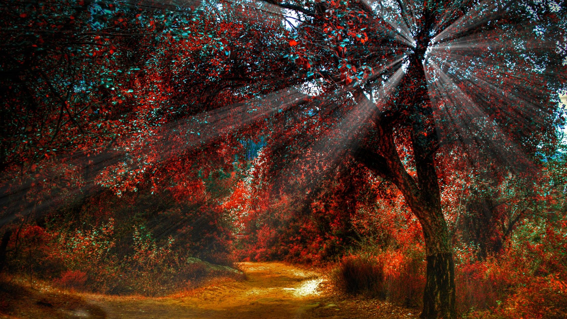 Drawn scenic amazing scenery Trees Red Colors Scenery Tag