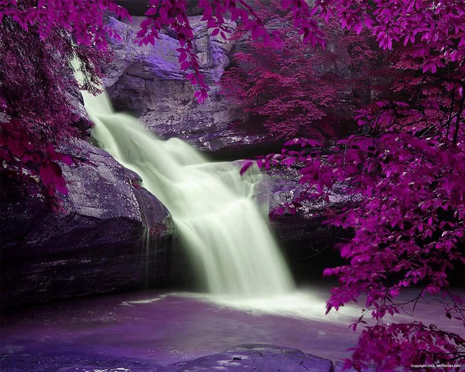 Drawn scenic amazing scenery #nature #scenic images Beautiful #scenery