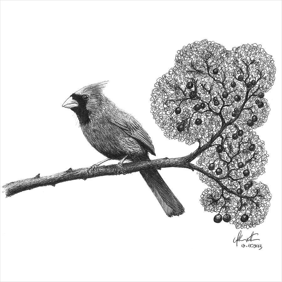 Drawn scenic black pen  Bird on Ideas Premium