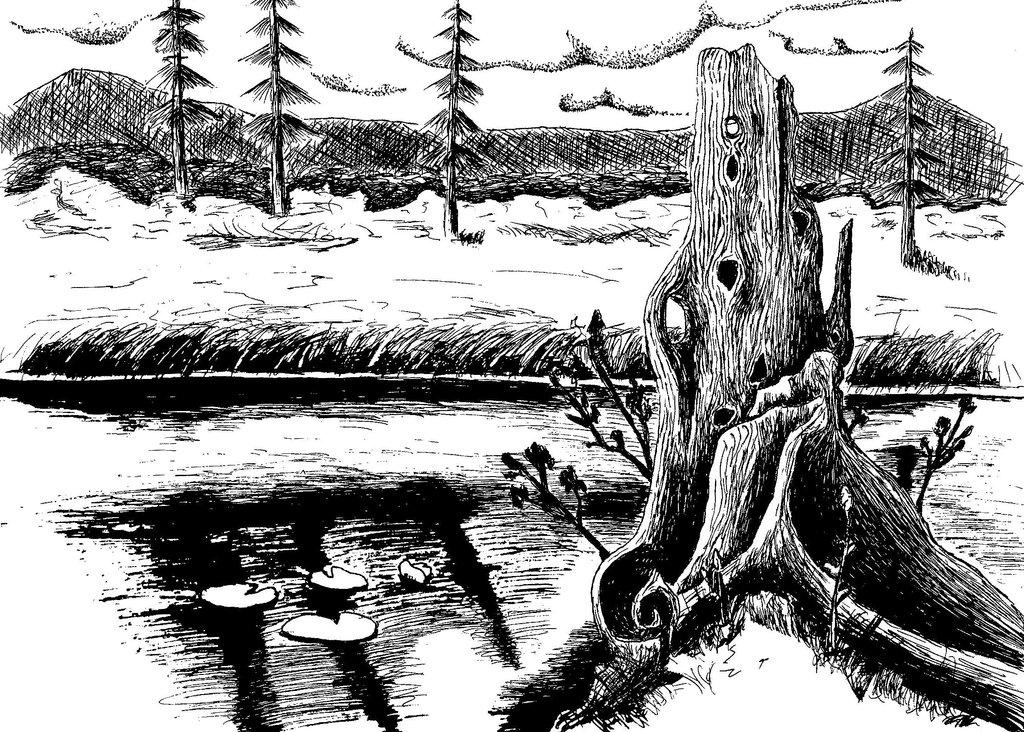 Drawn scenic black pen Fumtien and White DeviantArt and
