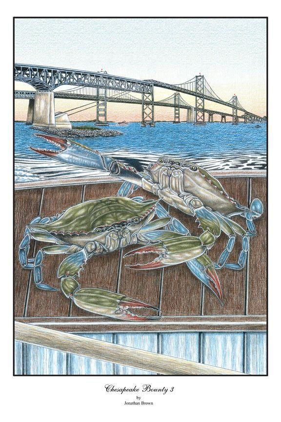 Drawn scenic boat The Bounty 3 a Chesapeake