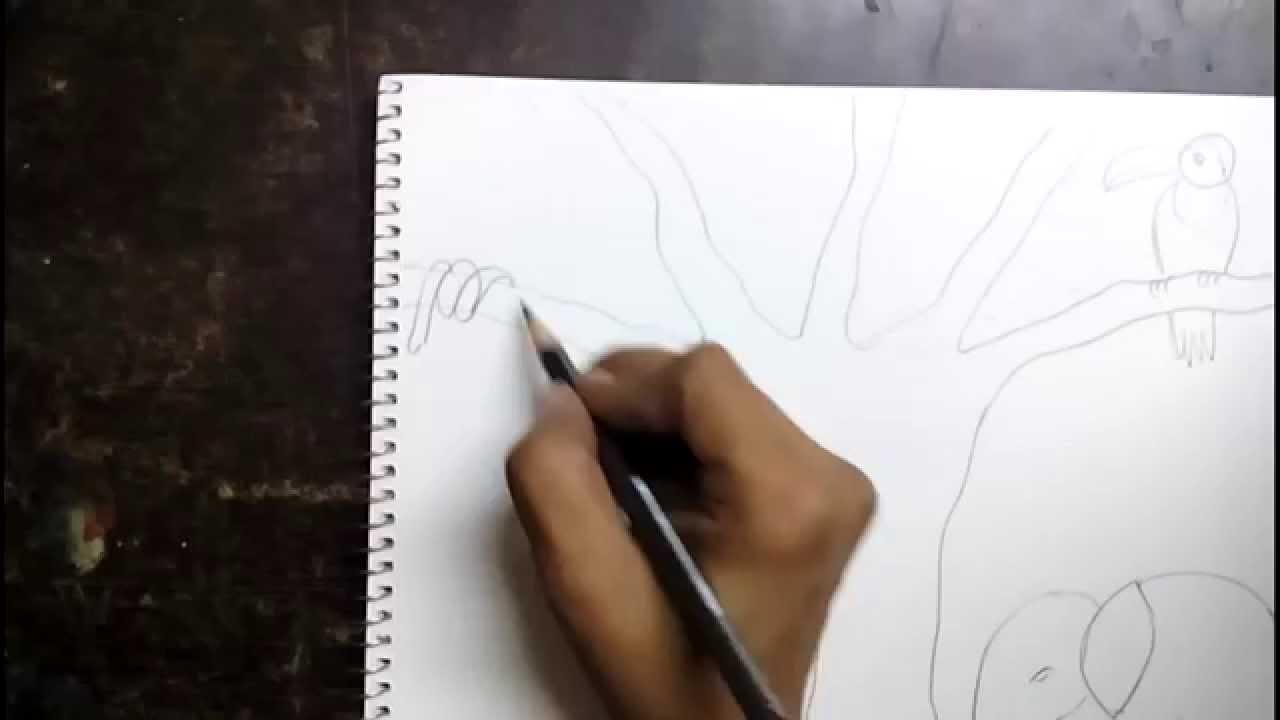 Drawn rainforest jungle scenery Scene a kids draw to