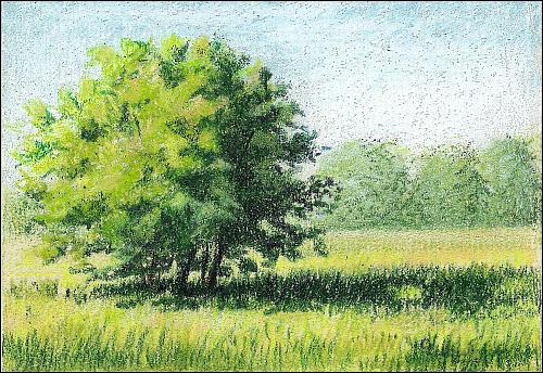 Drawn scenery colored pencil Cponuart8002 Using a Sandpaper Pencil