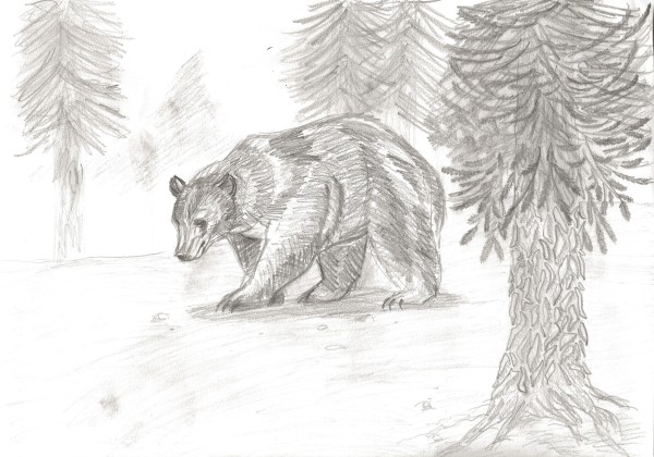 Drawn scenic forest Amazing 30+ takedesigns Pencil And
