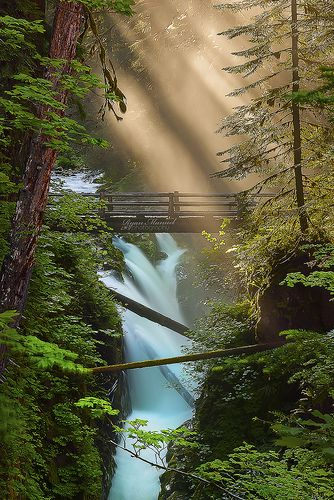 Drawn scenic go green More to to Pinterest images