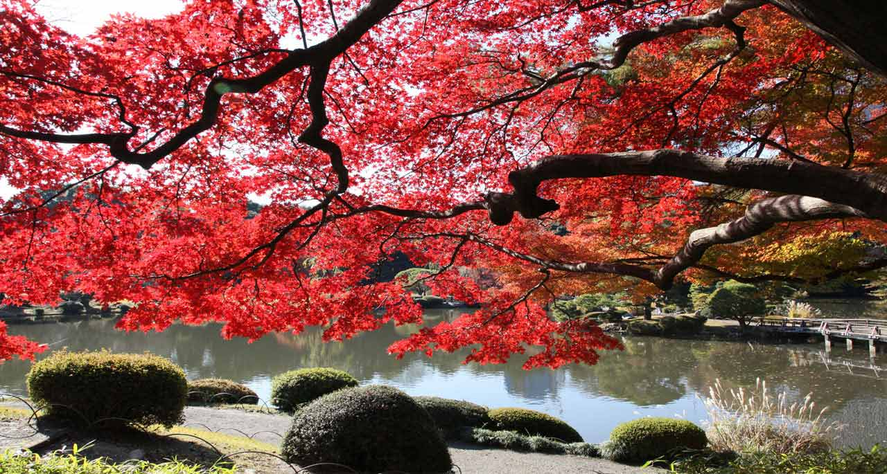 Drawn scenic japanese Scenic Sites Japan Itinerary