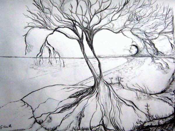 Drawn scenic nature Of drawing scenery Drawings of