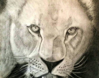 Drawn scenic outstanding Original and lion Outstanding animal