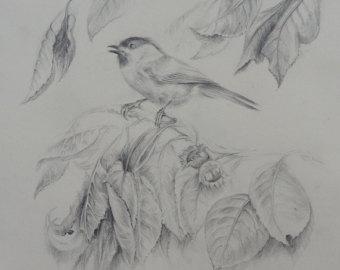 Drawn scenic portrait Drawing pencil graphite white PORTRAIT