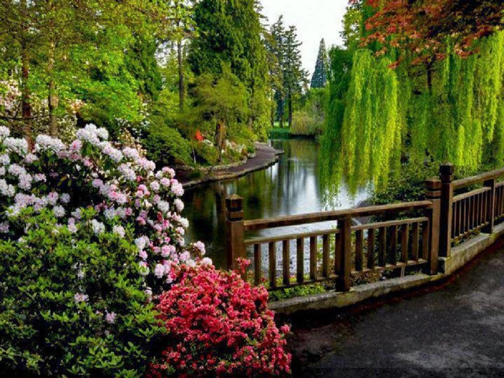 Drawn scenic river Scenery #776633 16 Nature for