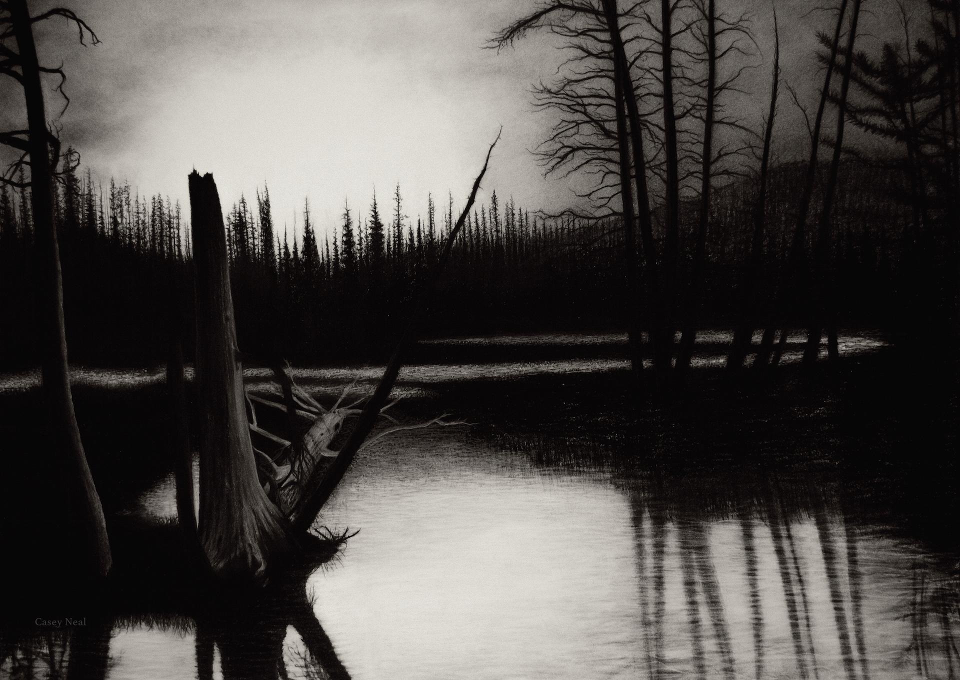 Drawn scenic senary Landscape Charcoal by CaseyNealArtwork by