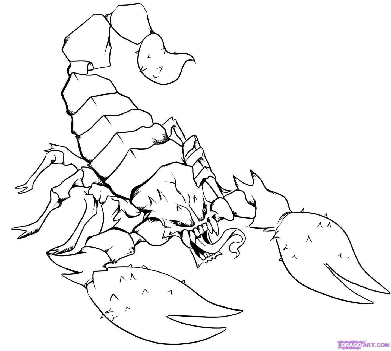 Drawn scorpion #14