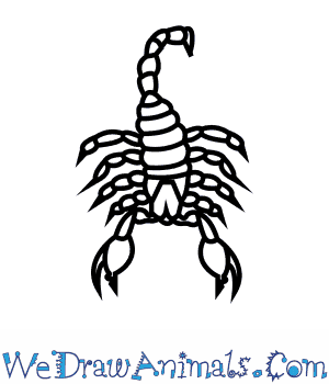 Drawn scorpion #3