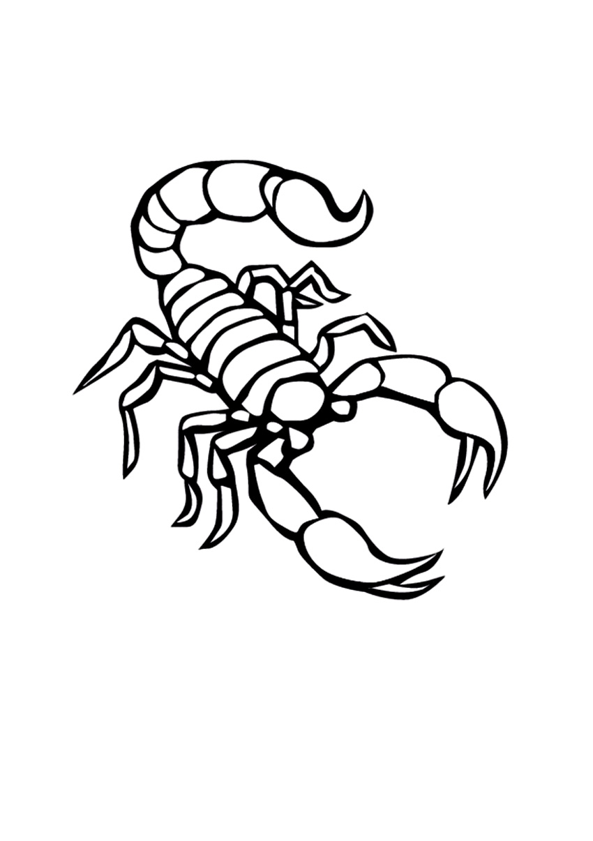 Drawn scorpion coloring Pages For Pages Scorpion Coloring