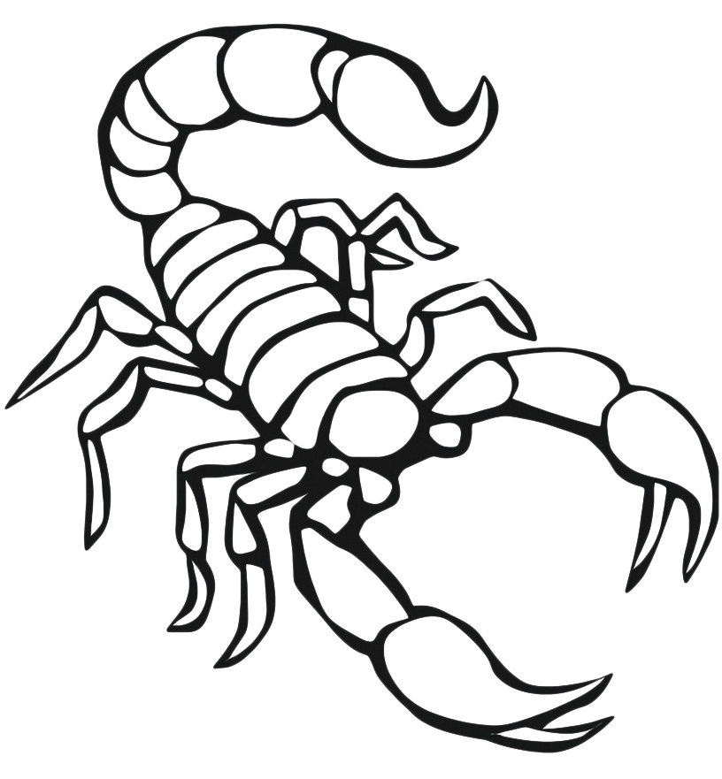 Drawn scorpion coloring page Coloring Printable Pages Scorpion Free