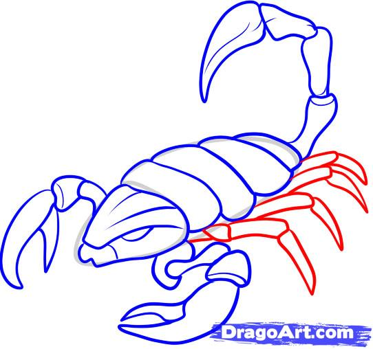 Drawn scorpion easy Free Art Clip Online Step