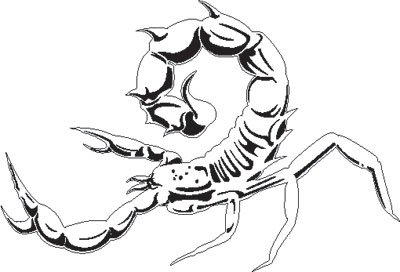 Drawn scorpion graffiti Design Scorpion top Airbrush art: