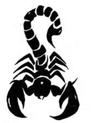 Drawn scorpion graffiti EFFECT SKETCHES ON Graffiti 3D