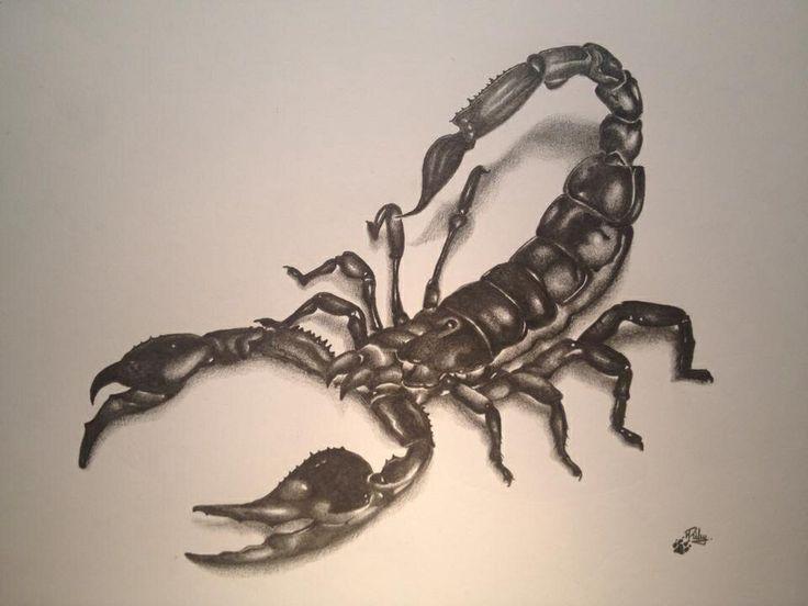 Drawn scorpion realistic Tattoo for dad Tattoo Scorpion