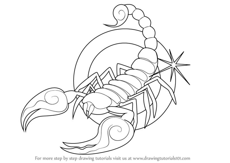 Drawn scorpion scorpio To by Sign How Learn