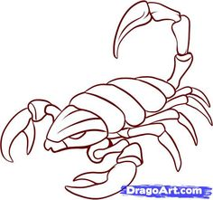 Drawn scorpion simple Drawing SCORPION coloring Search lovely