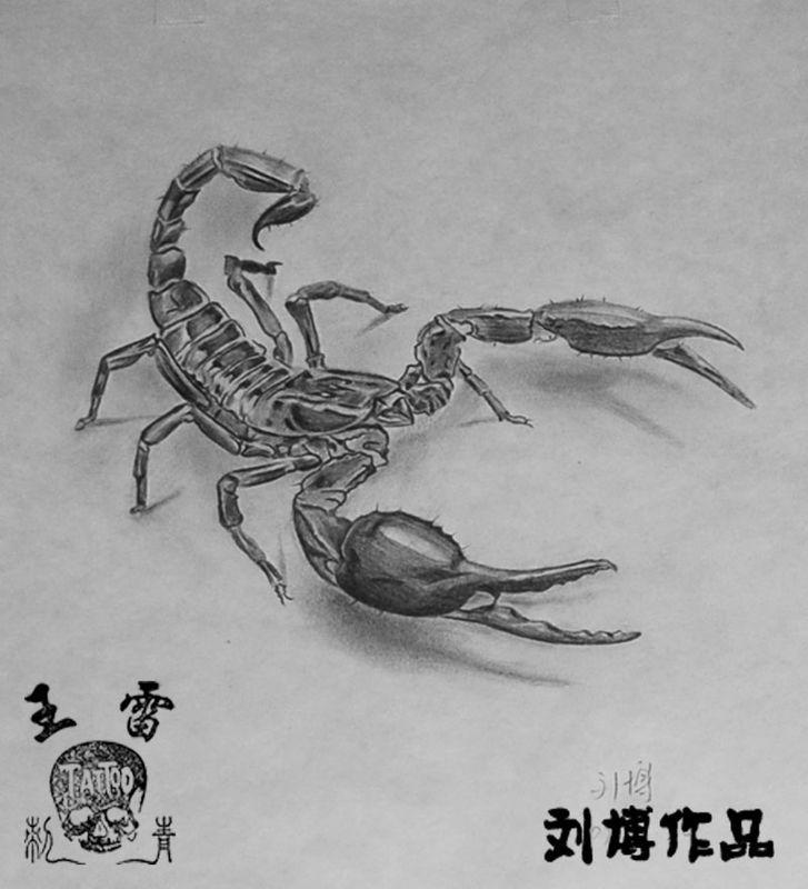 Drawn scorpion tatoo Designs tattoo Scorpion Tattoos 44