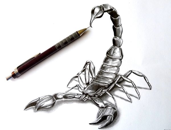 Drawn scorpion tatoo Com Tattoo Examples Of on