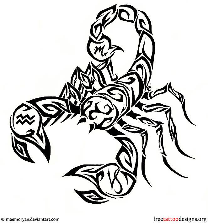 Drawn scorpion tatoo Tribal On Tattoos Design Tattoo