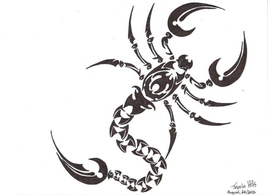 Drawn scorpion tribal art Pinterest Drawing Drawing Tattoo Scorpion