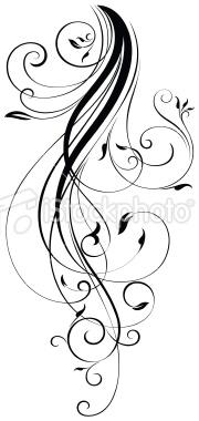 Drawn scroll swirl Scrolls description elegant curls All