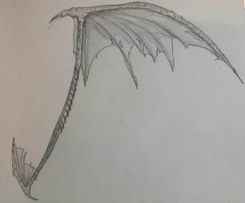 Drawn scythe dragon Wing Xemnas26 on scythe dragon