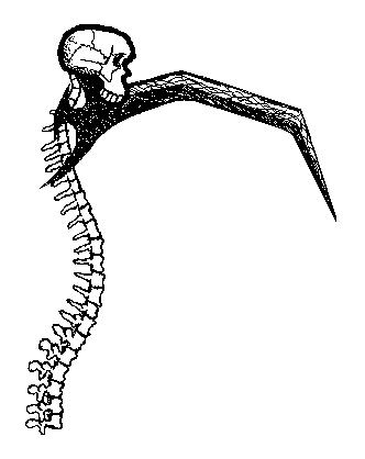 Drawn scythe spine By Redone on DeviantArt Spine